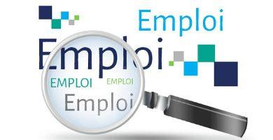 Formation de l'OIS sur l'emploi